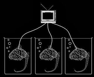 Foto de tres cerebros conectados a un ordenador